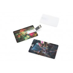 Flat Card | USB048 16GB